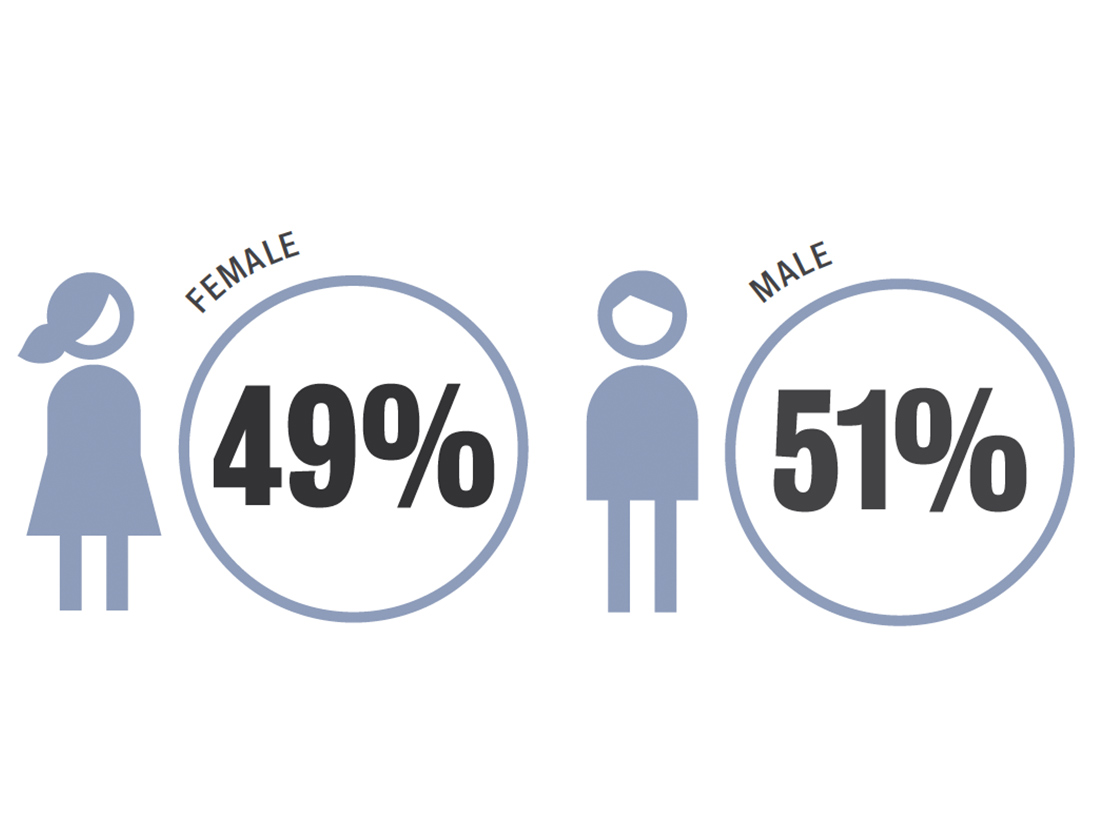 49% female and 51% male