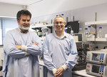 From left: Dr Ian Dodd and Dr Keith Shearwin are researching the phenomenon of DNA looping Photo by Sandhya Rughoo