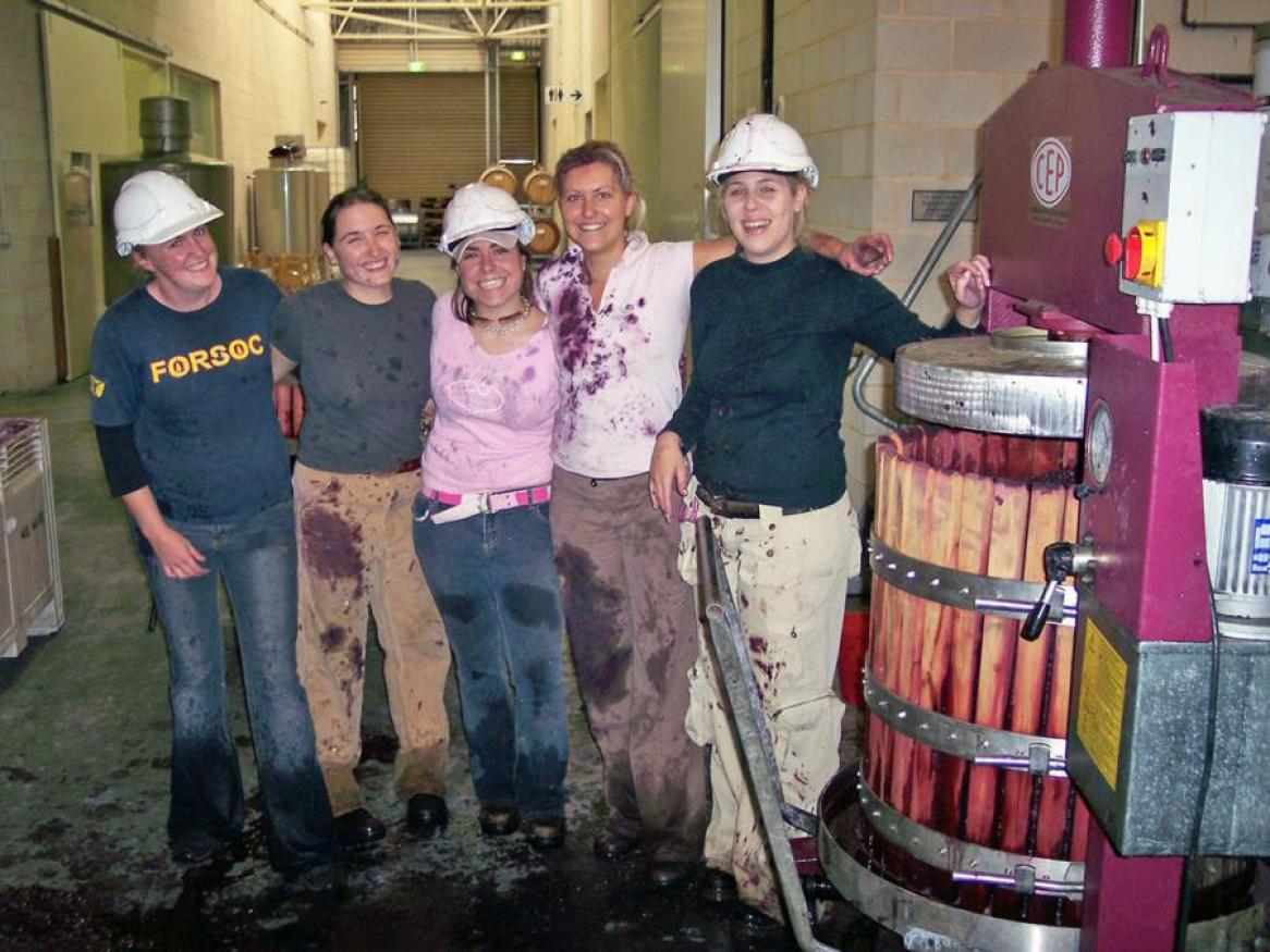 Students doing a wine internship