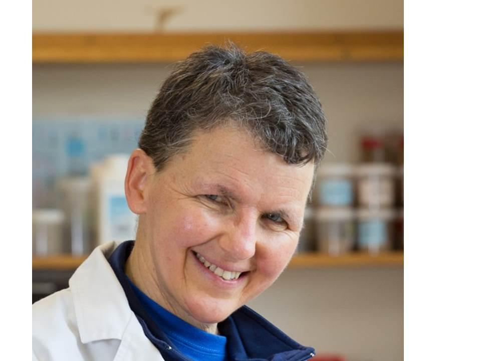 Professor Petra Marschner