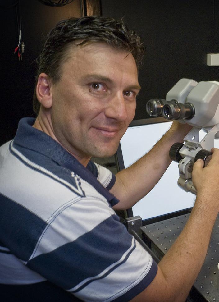 Dr Steven Wiederman