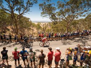 Tour Down Under, Stage 5 - McLaren Vale to Willunga Hill