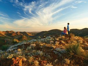 Yacca Lookout, Willow Springs Station, Flinders Ranges