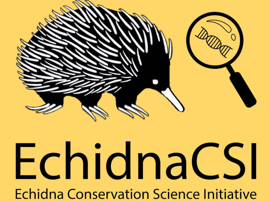 Echidna CSI at the University of Adelaide
