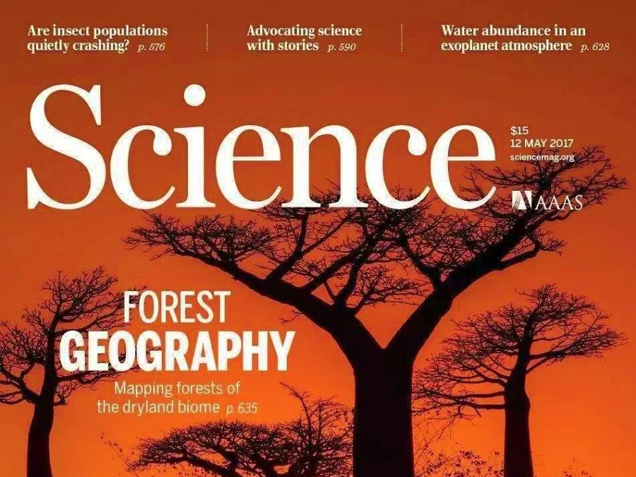 Lost forests in Science