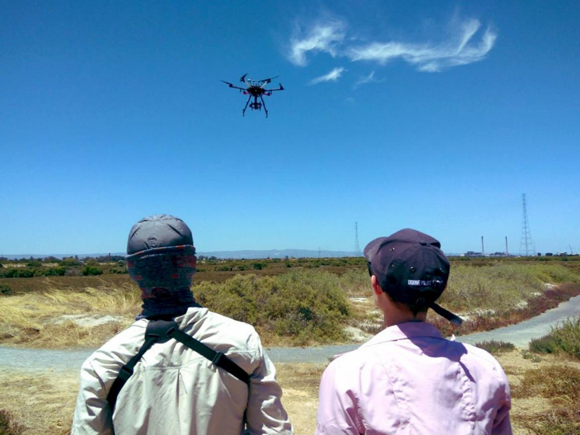 Researchers with drones at Mutton Cove