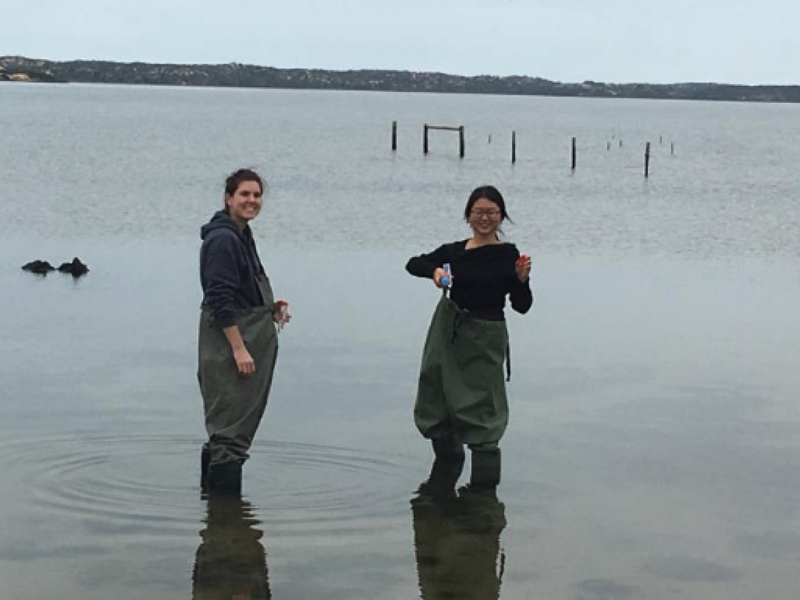 South Australia Coorong water quality monitoring team in water