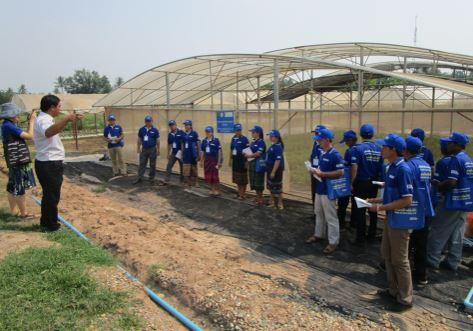 Novel project greenhouse providing backdrop to research and extension activities in Laos. Note roof gap venting, wide span, height, internal shade and side netting.
