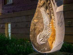 Indigenous sculpture Spriggina Floundersi lit up at night