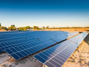Roseworthy Solar Farm up close