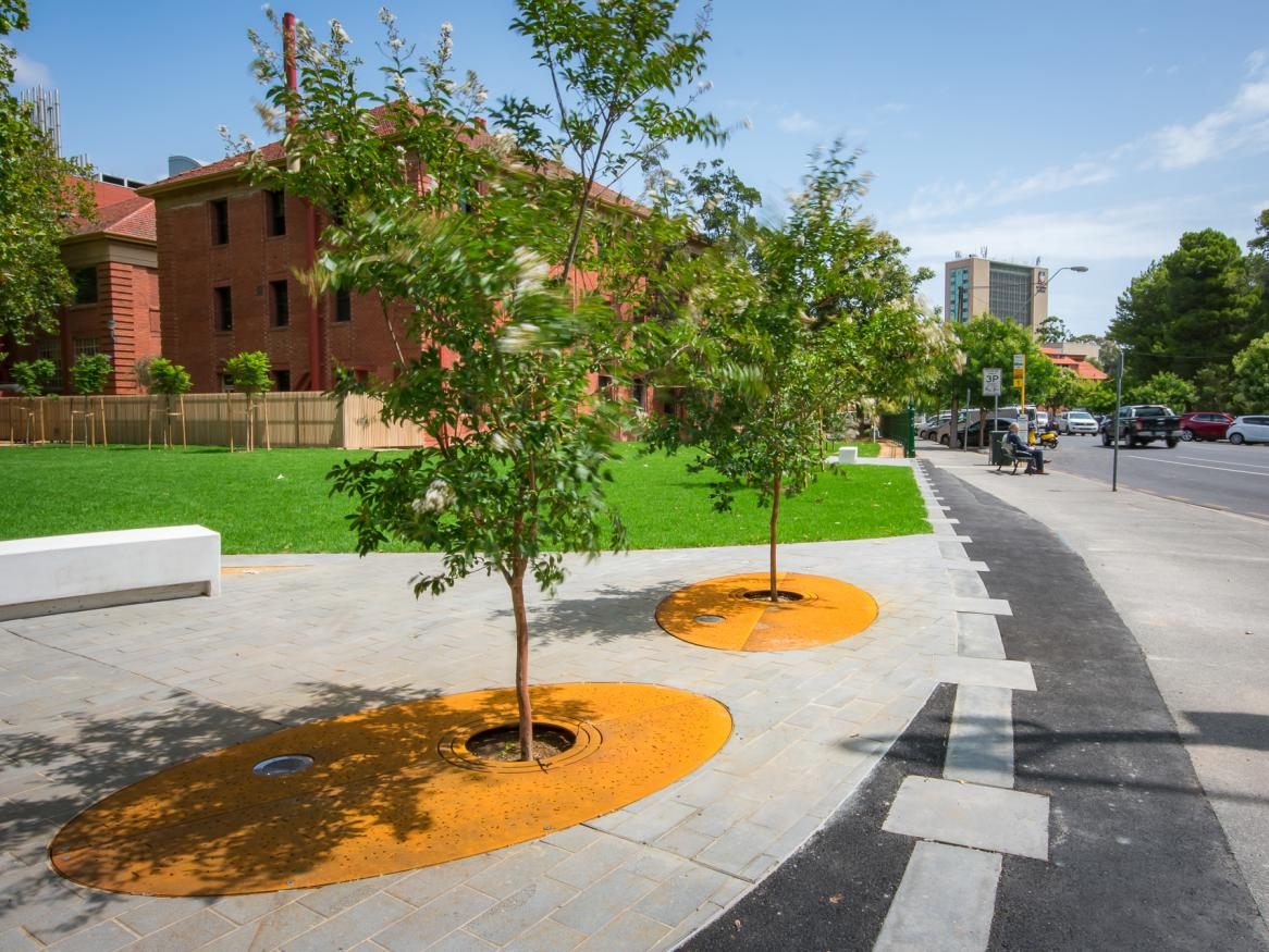 New tree planting and landscaping at Mawson Corner