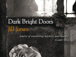 Dark Bright Doors