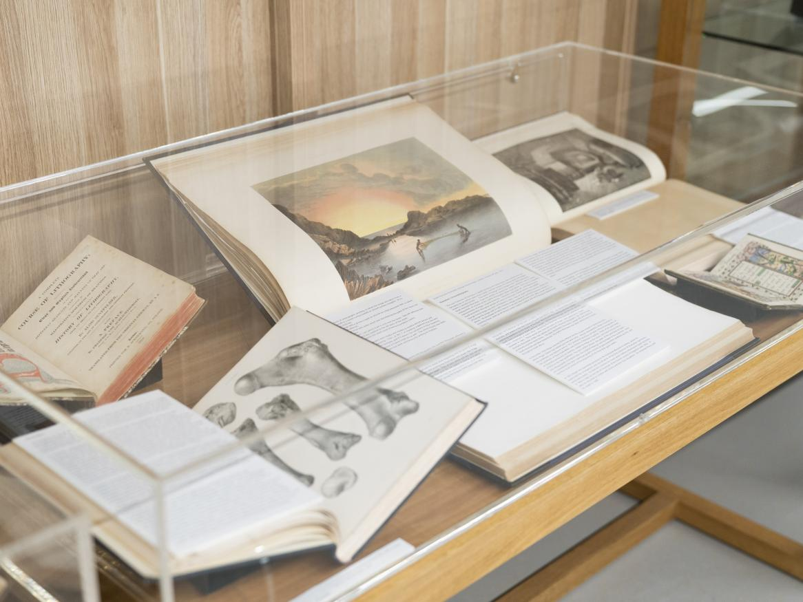 Display case on Level 1 of the library
