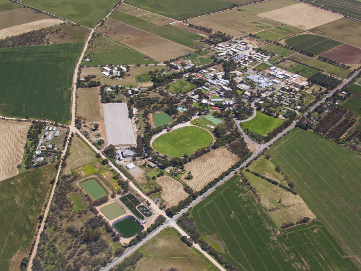 arial shot of roseworthy campus
