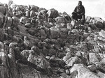 Douglas Mawson pictured at a southern extremity of rocky area at Cape Denison.