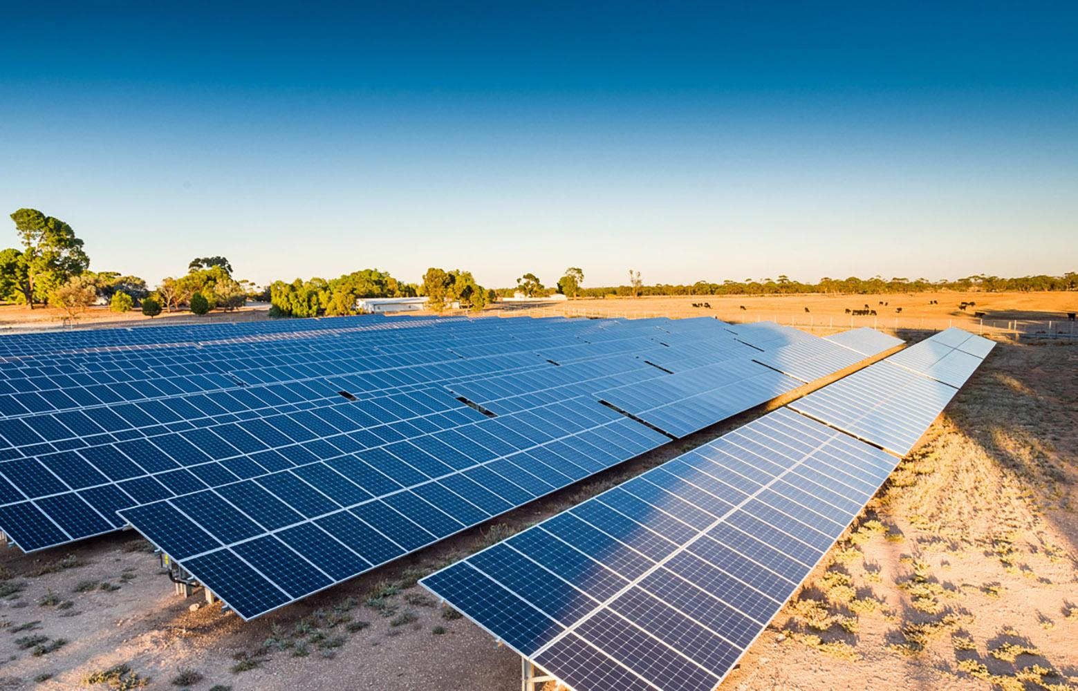 Roseworthy solar farm