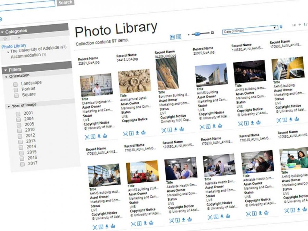 Search the Photo Library