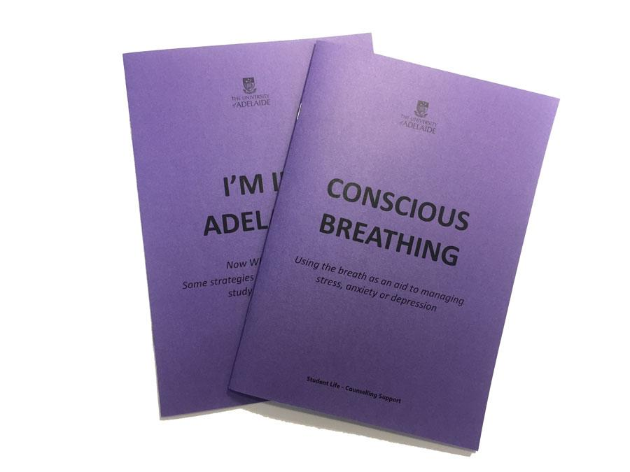 purple booklets image