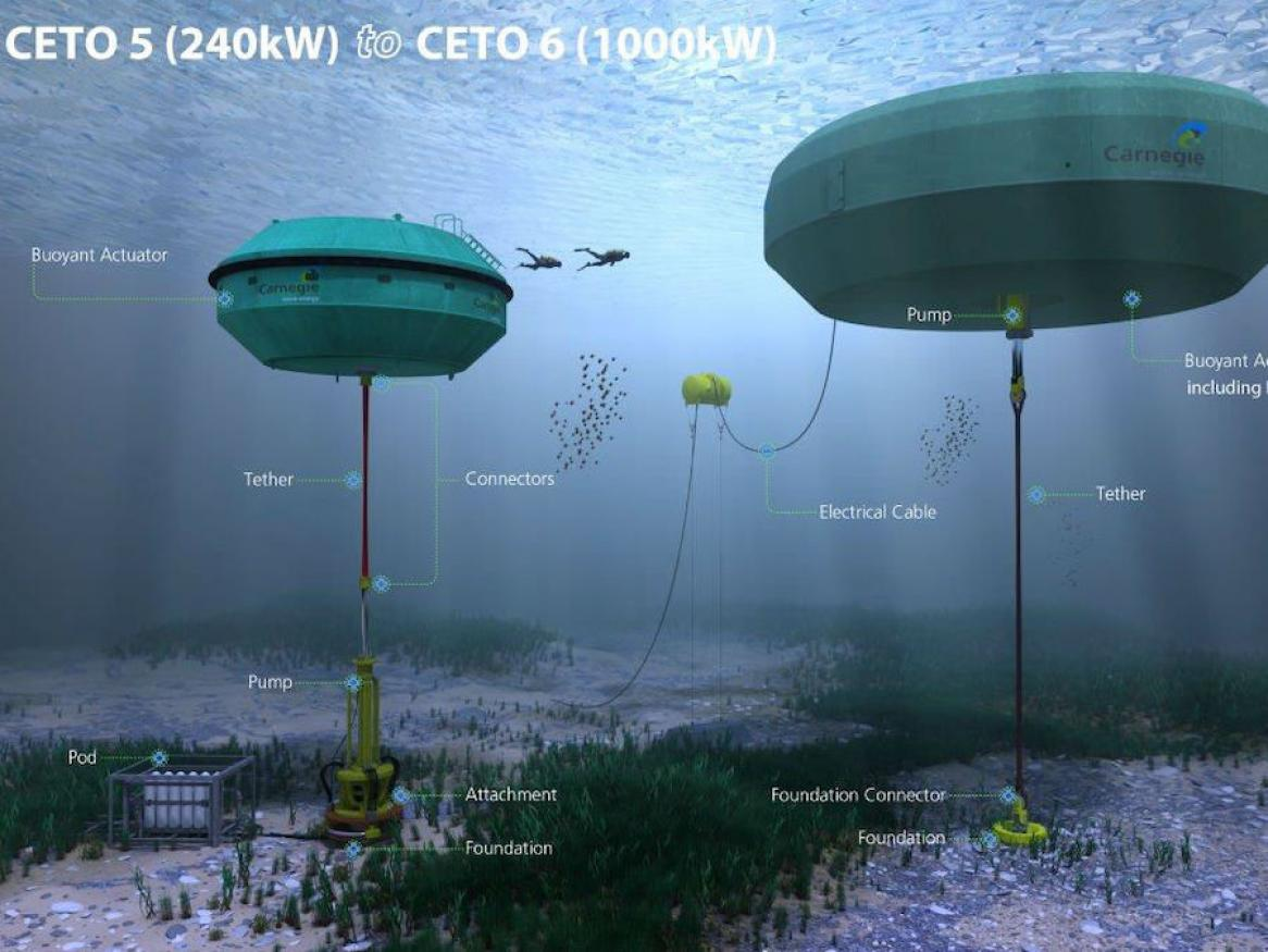 The Wave Energy Research Group run simulations and modelling on wave energy technology